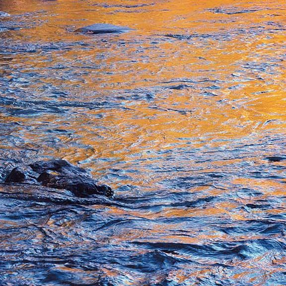 """Christopher Burkett, """"Blue and Gold Swirling Water, WY."""""""