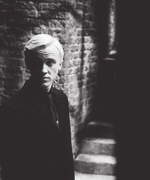 Tom Felton / Draco Malfoy / Harry Potter And The Half