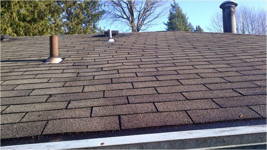 Roof Cleaning Products