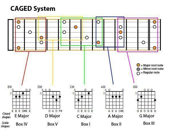 Notes On Guitar Fretboard Chart To Guitar Chapter Ii 2 Scales Diatonic Scales In Practice Guita Guitar Chords Best Acoustic Guitar Basic Guitar Lessons