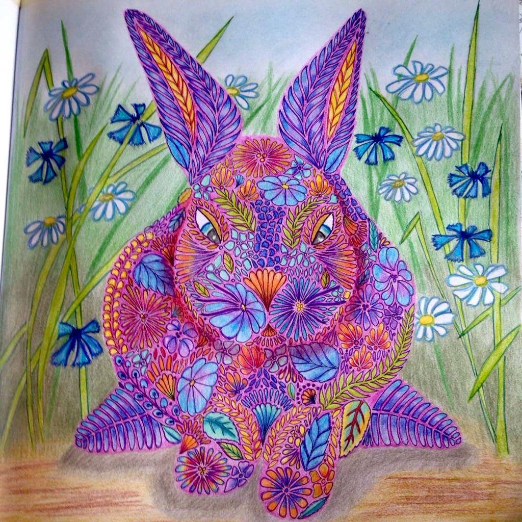 Rabbit# animal kingdom # Millie Marotta | My coloring pages | Pinterest