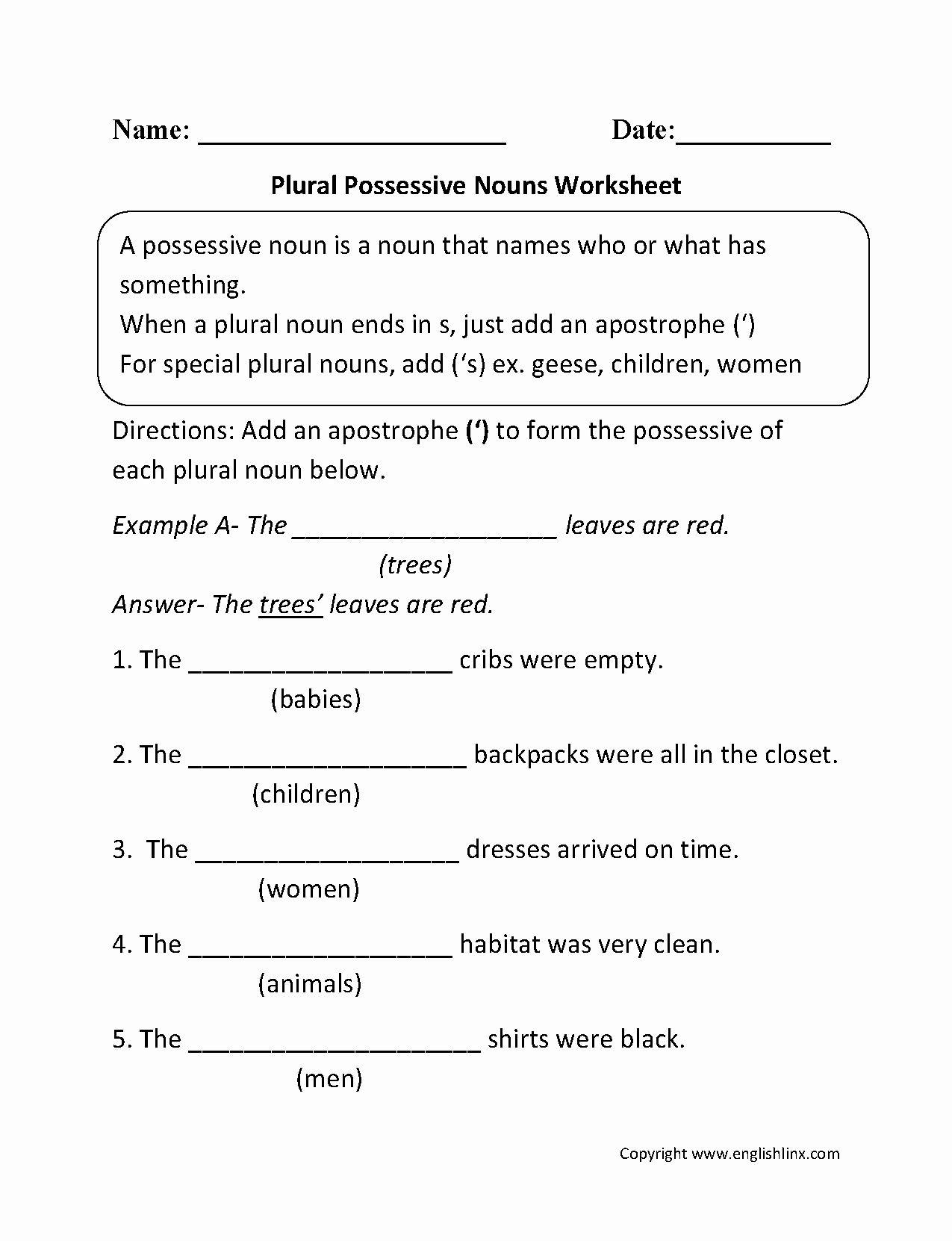 Singular Possessive Nouns Worksheet Luxury Plural Noun