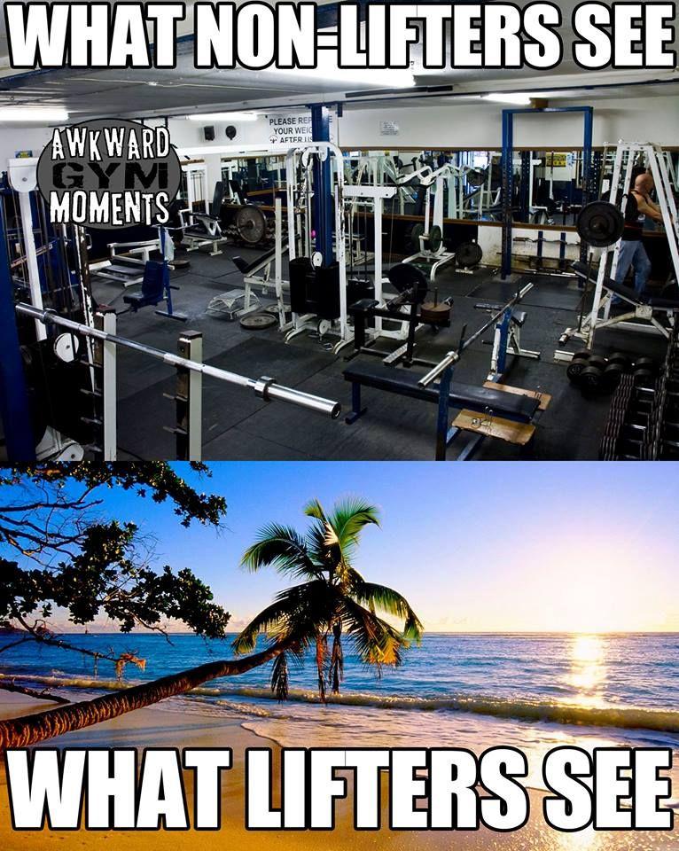 Gym Humor Paradise See Bilder Fitness Motivation