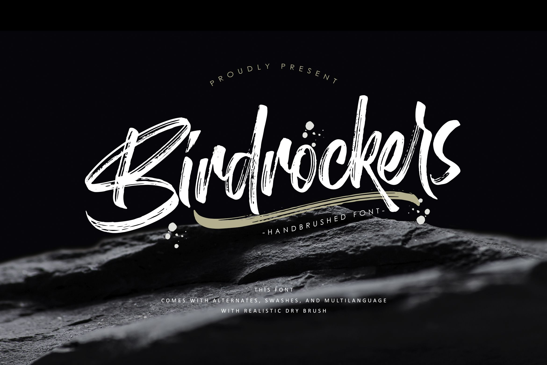 Birdrockers Realistic Brush Font Brush Font Script Fonts Script