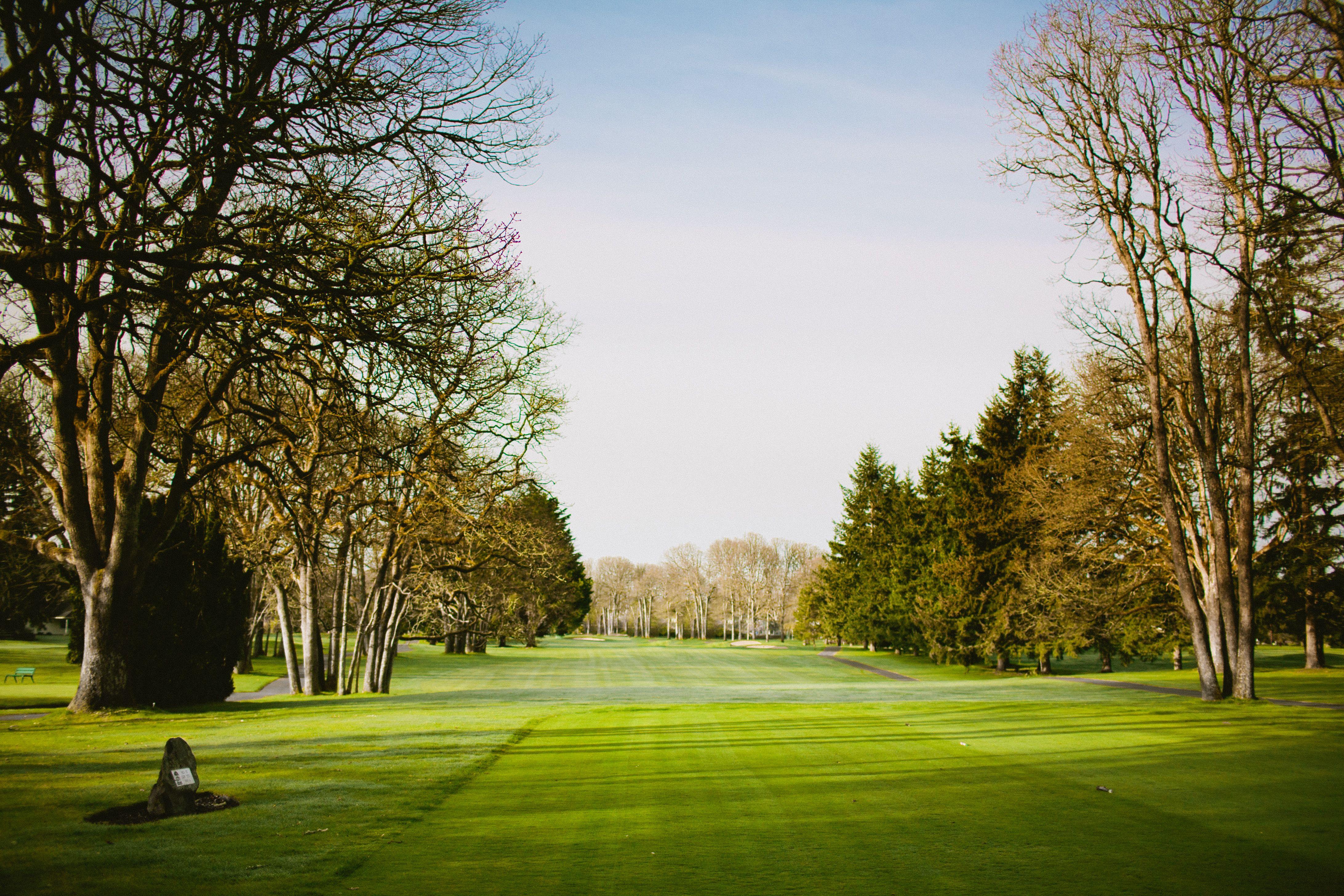 Looking down the green at Oakbrook Golf Club, Lakewood, WA.