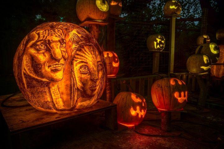 Spectacular Jack O Lanterns Brilliantly Carved And Lit Up Pumpkin Carving Awesome Pumpkin Carvings Pumpkin Art
