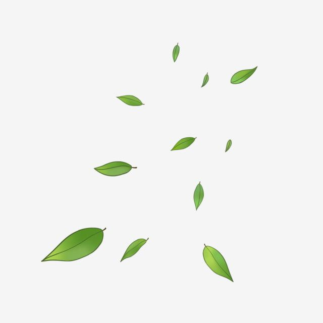 Vector Wind Blowing Leaves Floating S Wind Clipart Leaves Clipart Png Transparent Clipart Image And Psd File For Free Download Leaf Clipart Clip Art Clipart Images
