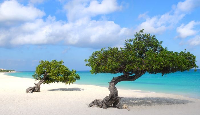 Eagle Beach Located In Aruba Is Definitely Among The Top 10 Destinations World