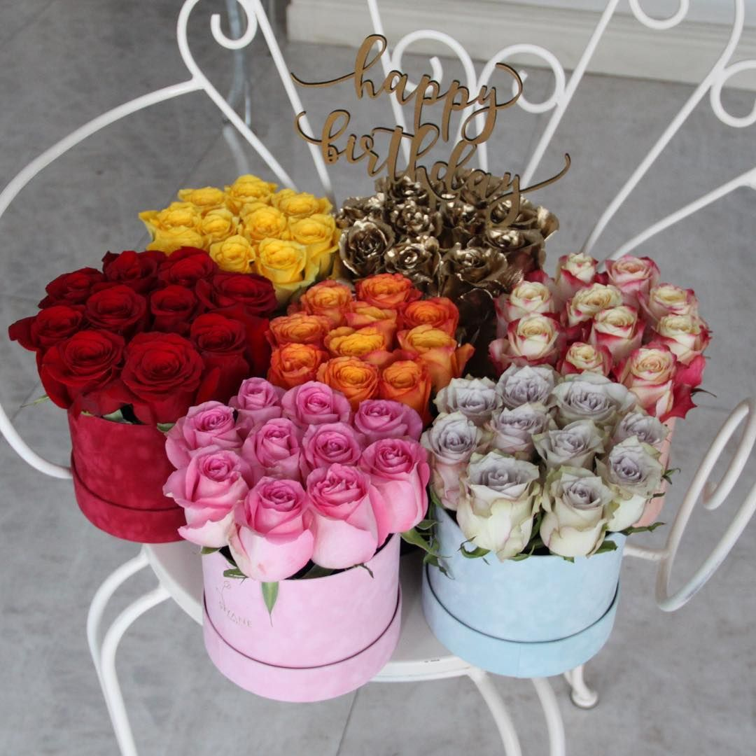 happy colours roses pinterest happy colors