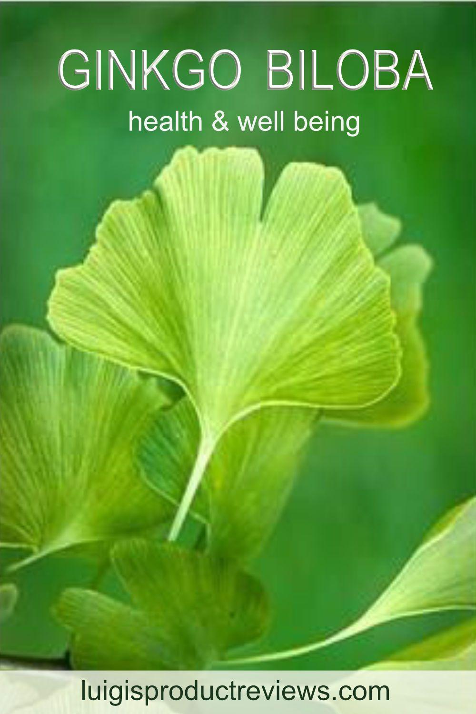 Ginkgo biloba benefits health well being in 2020