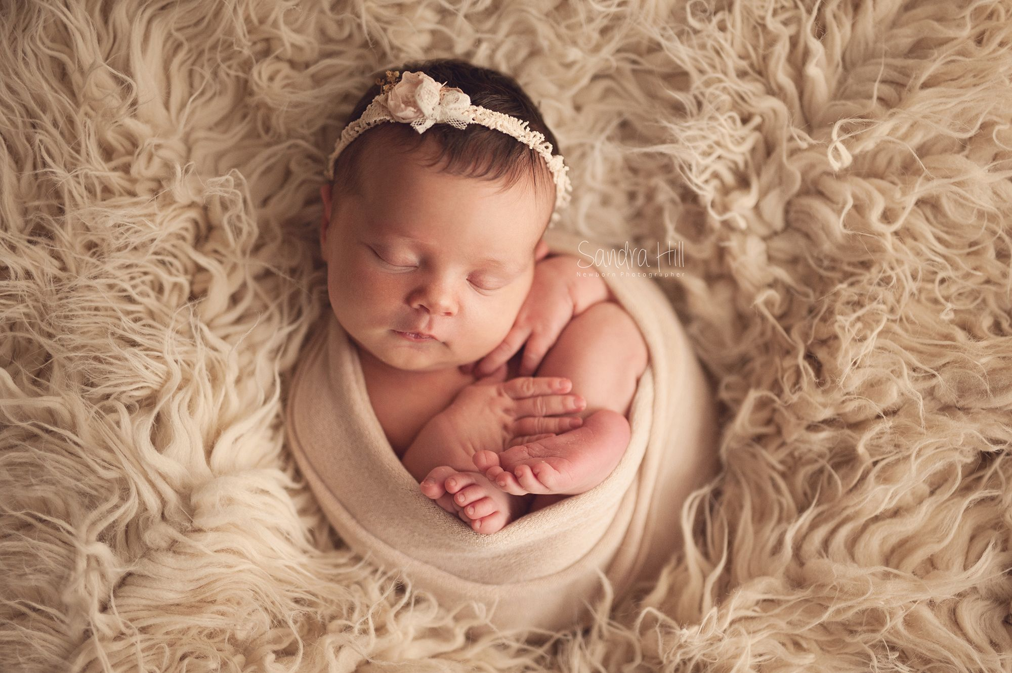 Sandra hill photography pretty baby girl brantford ontario newborn photographer hamilton ontario