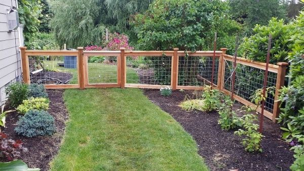 Image result for hog wire fence   Backyard in 2019   Fence ...