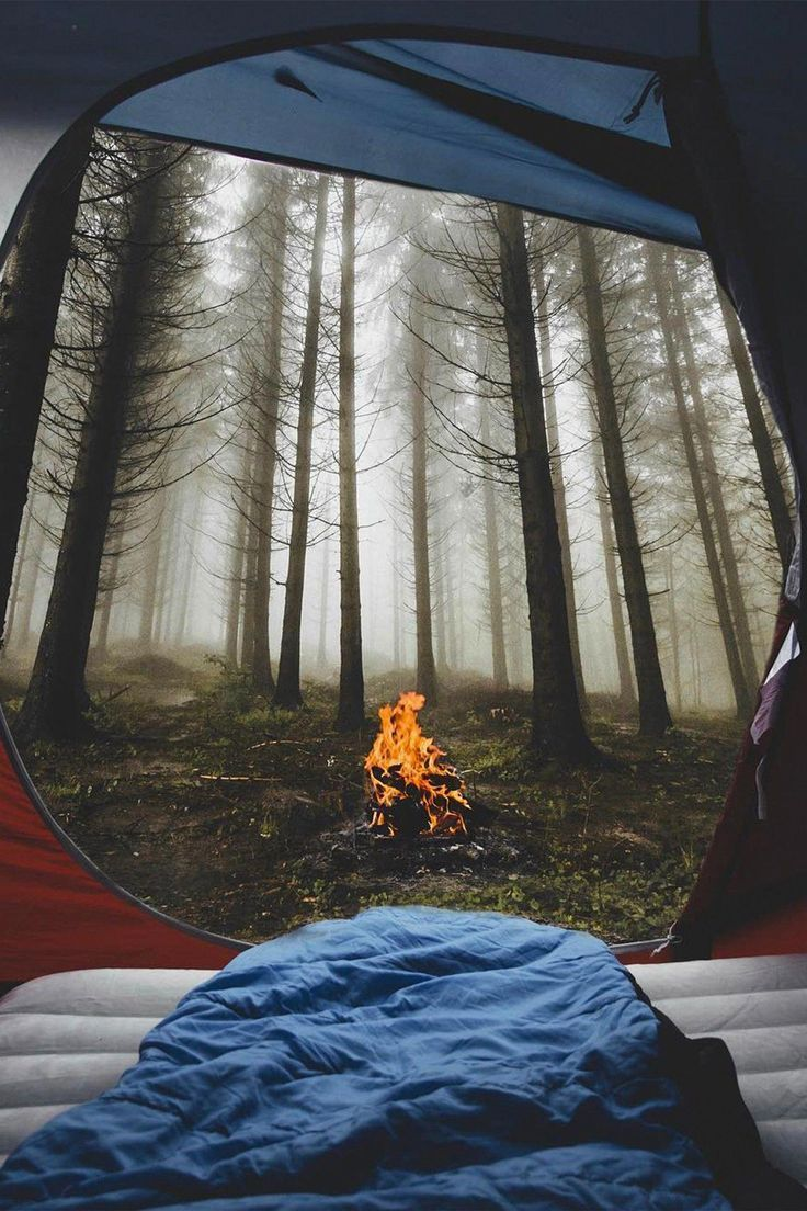 Tent camping view #camping #camping #tips ,  tent camping glamping, tent camp…