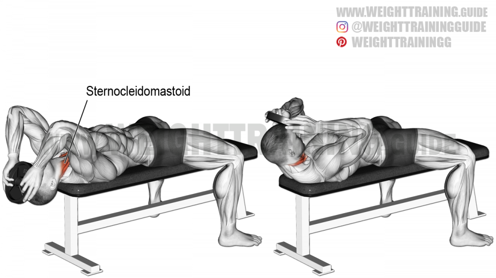 High reverse plank exercise instructions and video
