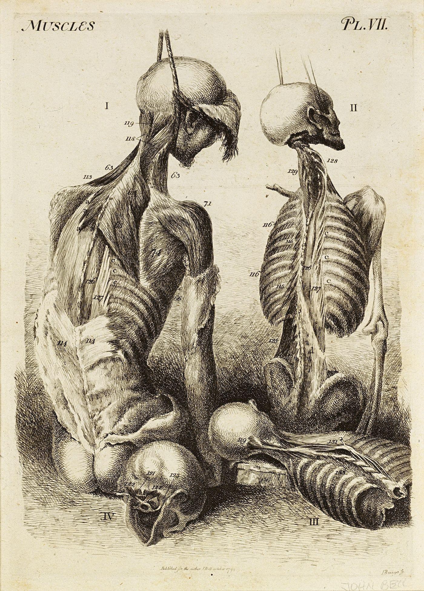 The Dance of Death Across Six Centuries of Art   Pinterest   Museums ...