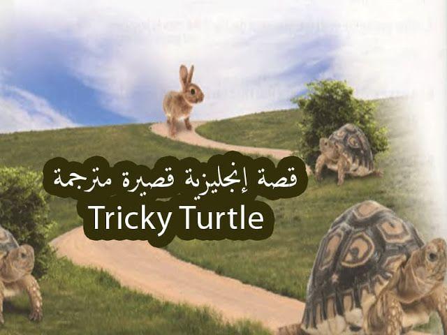 قصة قصيرة مترجمة للمبتدئين بعنوان السلحفاة المخادعة Tricky Turtle Turtle