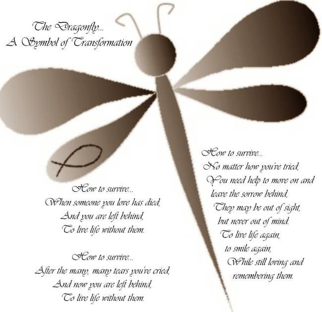 The Dragonfly A Symbol Of Transformation Dragonflies Symbols And
