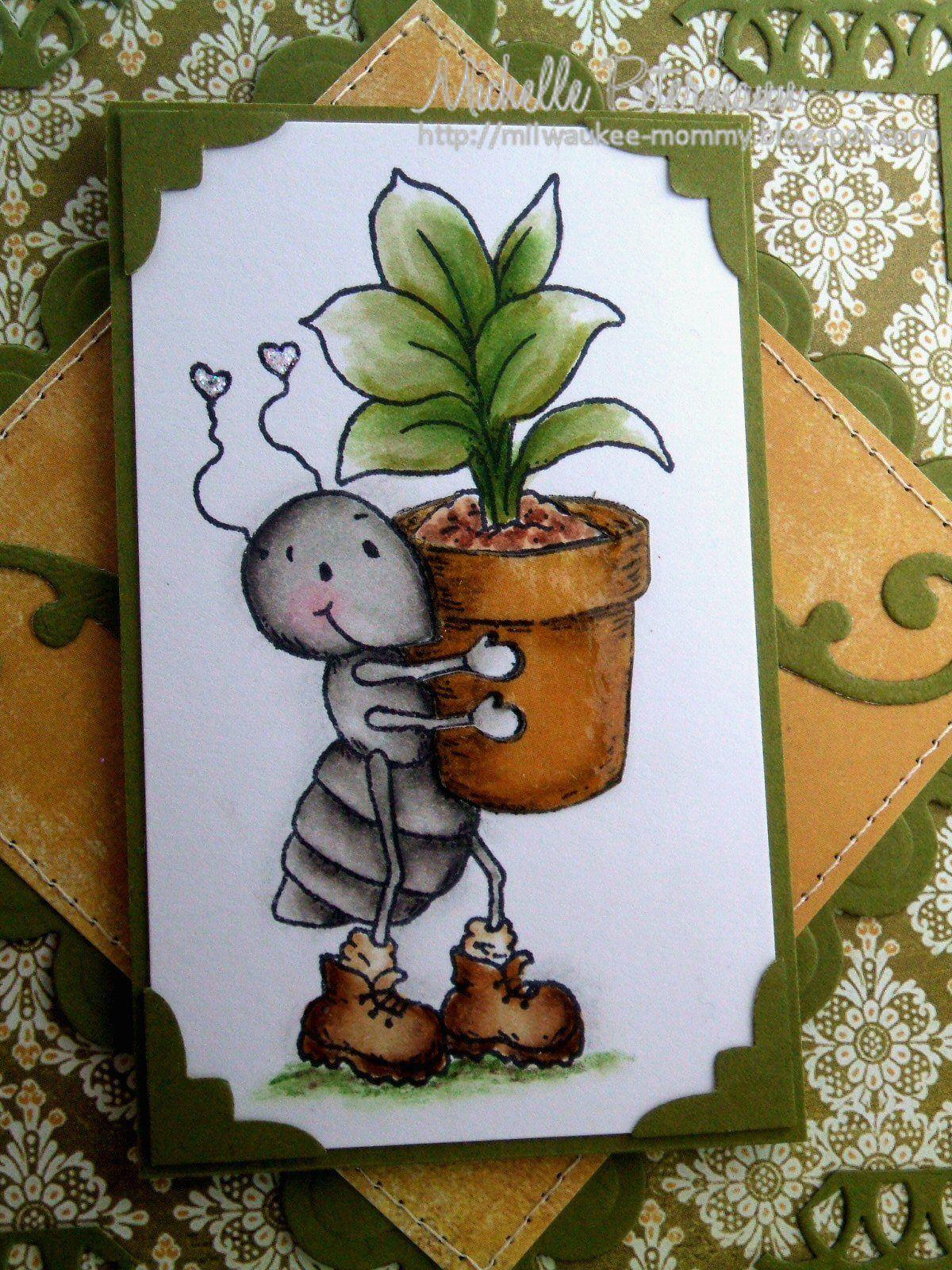 Mini Rubber Plant