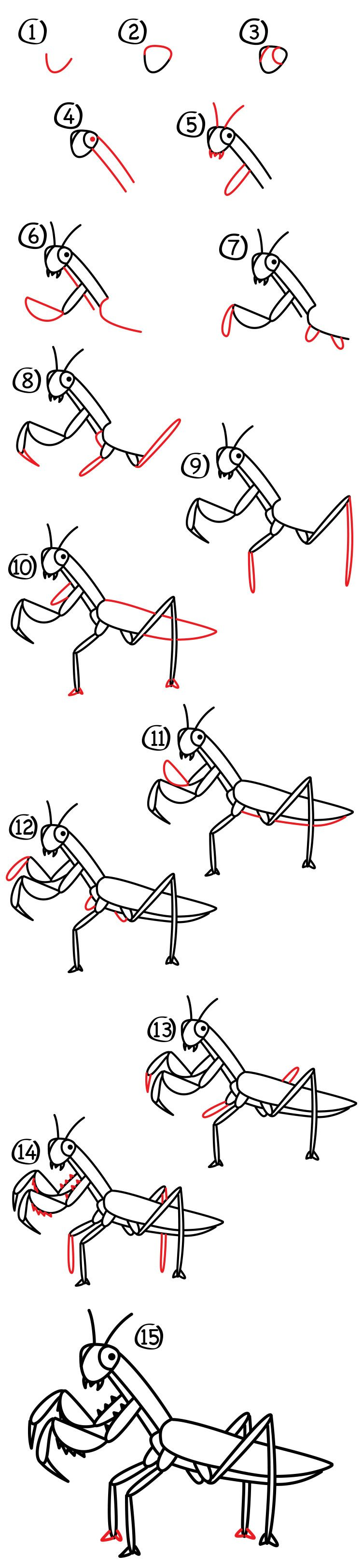 How To Draw A Praying Mantis Art For Kids Hub Art For Kids