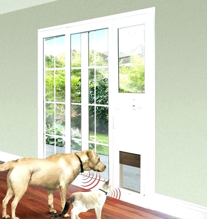 Dog Door Sliding Door Sliding Door Dog Door Sliding Door Dog Door Sliding Glass Dog Door Pet Door Sliding Glass Door Pet Patio Door