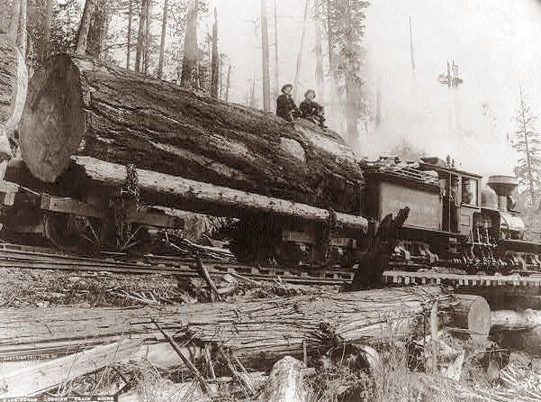 Old Logging Photos Washington State Old Logging Camps