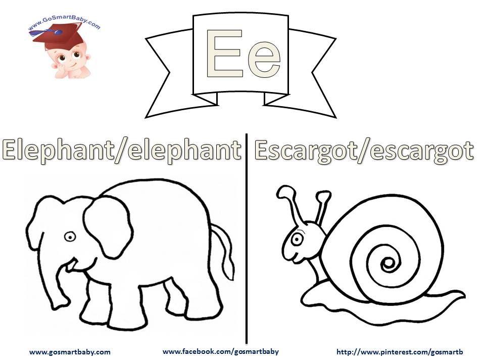 coloriage de l u0027alphabet la lettre e et les mots elephant et