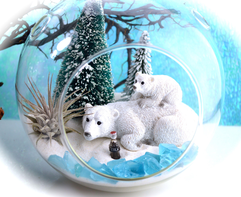 """Winter Polar Bear Terrarium Kit 6"""" Air Plant Terrarium"""