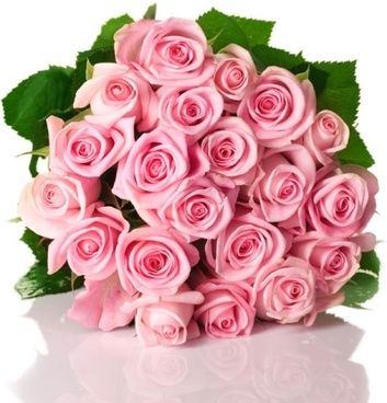 Pink rose 03 hd pictures flowers pinterest hd picture white pink rose 03 hd pictures mightylinksfo Choice Image