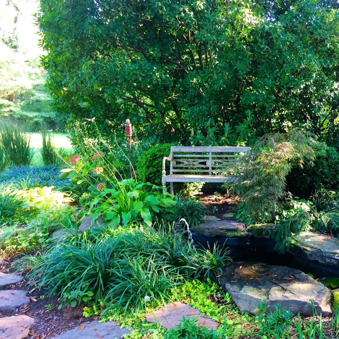Small Garden Secrets: Backyard Garden Oasis With Fountain And Pond With Frogs