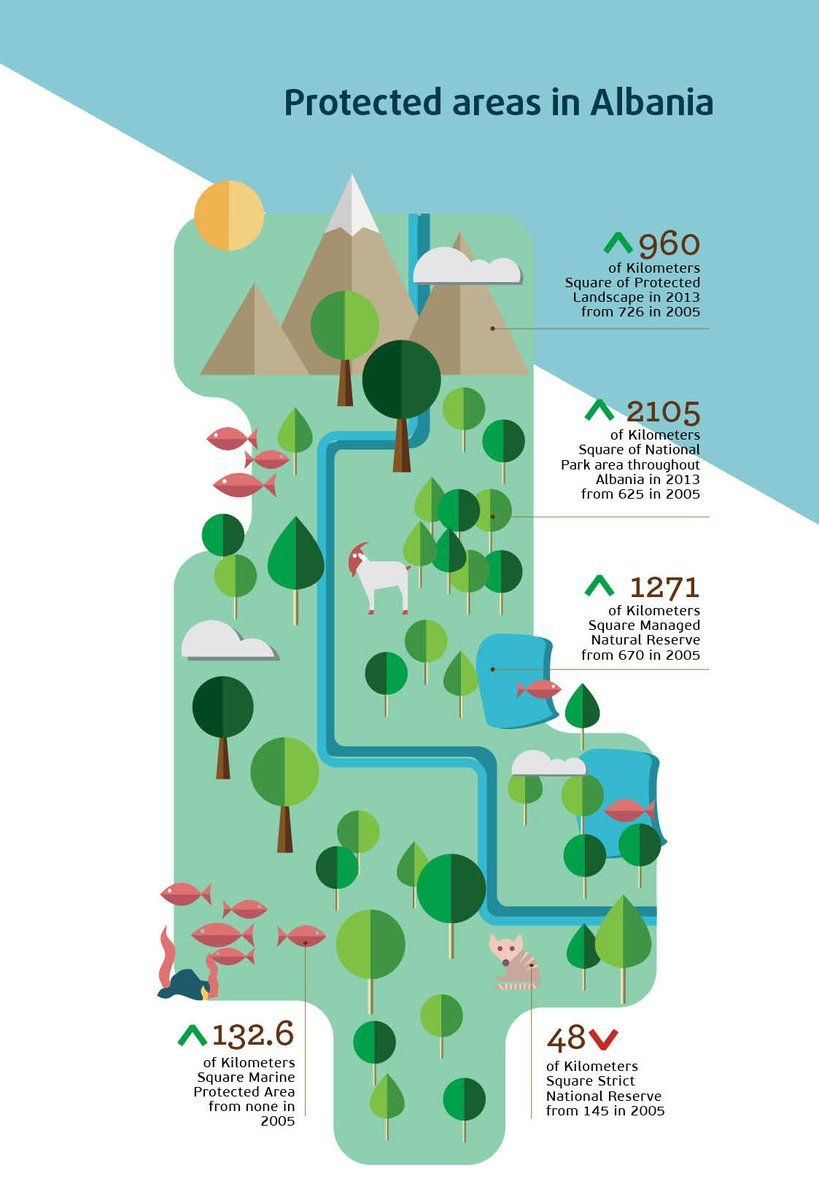 Pin By Danielle Ruffatto Alberts On Infographics Infographic
