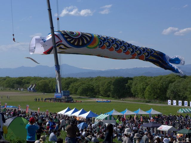 a huge carp streamer that size is 100m
