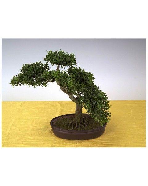Drzewko Bonsai 40 Cm Kwiaty Sztuczne 5923087104 Oficjalne Archiwum Allegro Plants