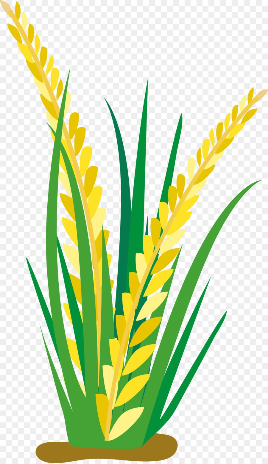 Rice Paddies Clip Art