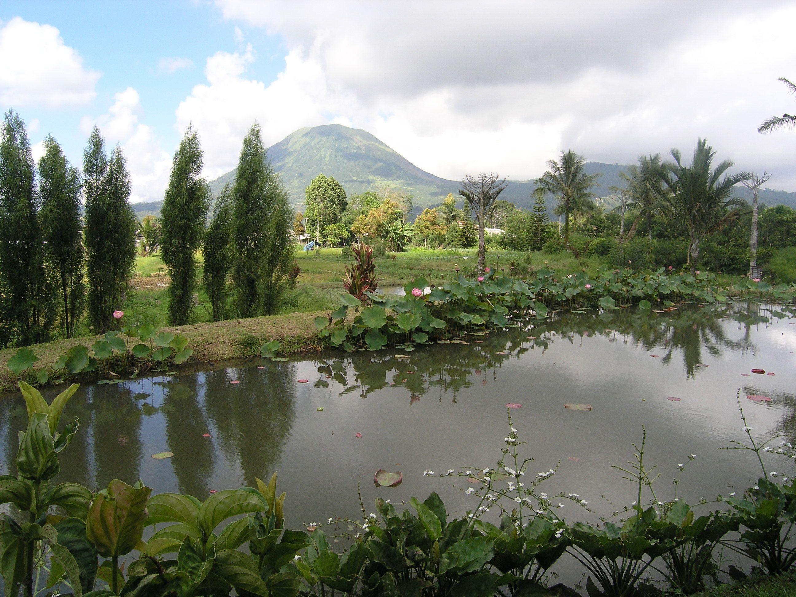 Tomohon Botanic Garden, North Sulawesi, Indonesia North