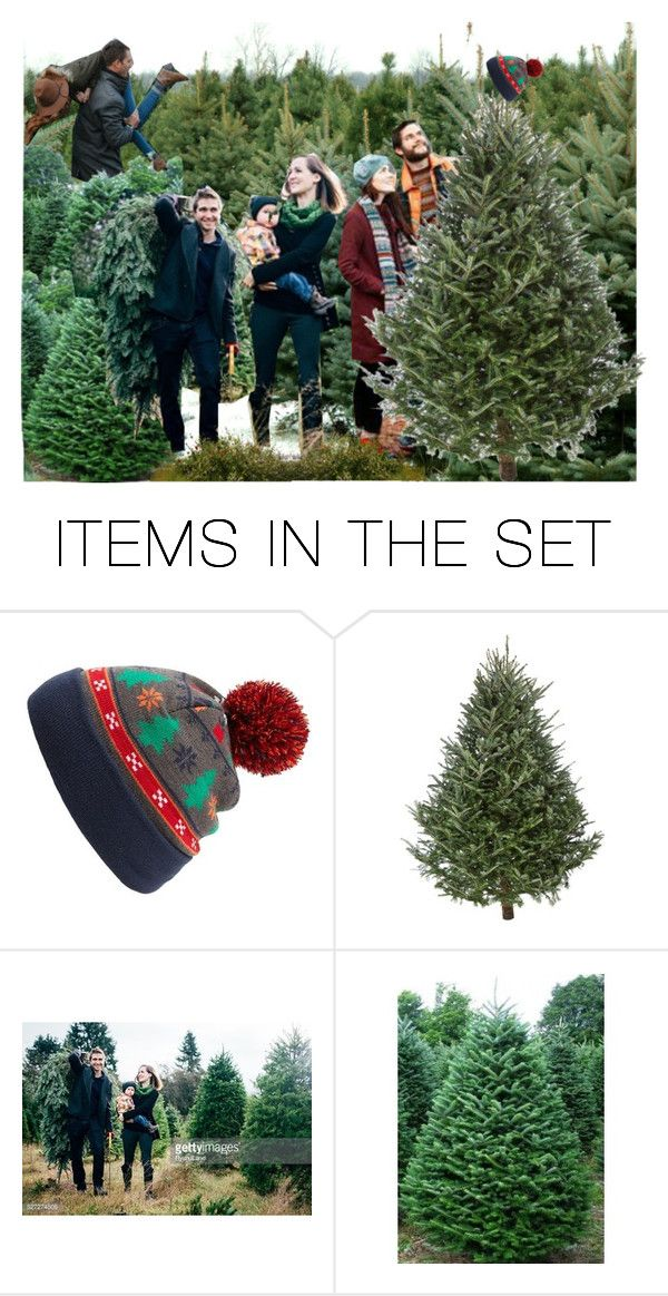 """Getting the perfect christmas tree"" by sophia561 ❤ liked on Polyvore featuring art"