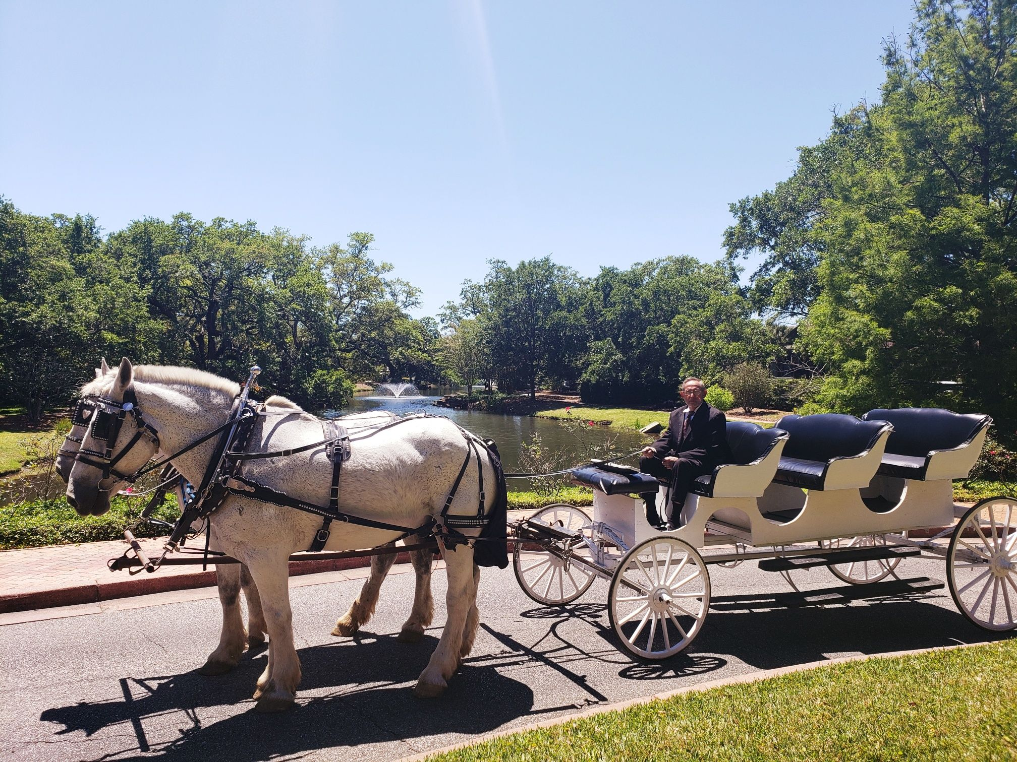 Grand Carriage Rides For Easter Point Clear Al Grandmoments Easter Grand Hotel Beach Hotels Hotels And Resorts