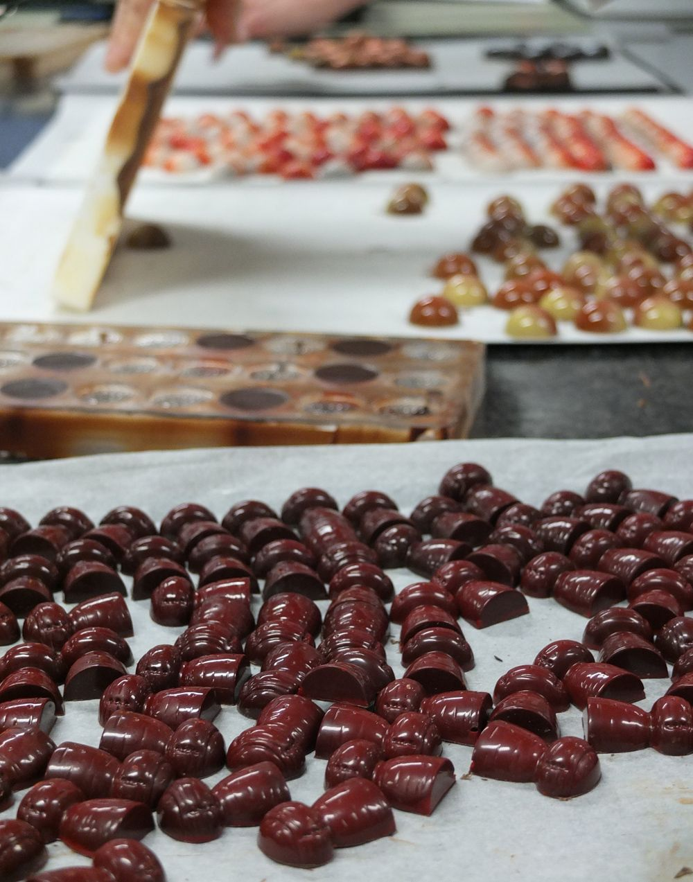 """I recently did another course at the """"Chocolate Academy"""" in Belgium."""