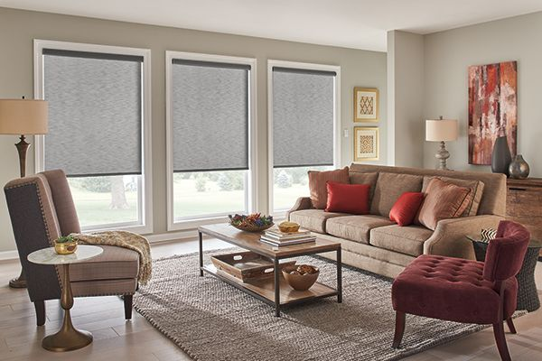 Graber Blinds Roller Shades With Motorized Lift Harmony Cityscape 02601 Roller Shades Room Darkening Shades Home Decor Inspiration