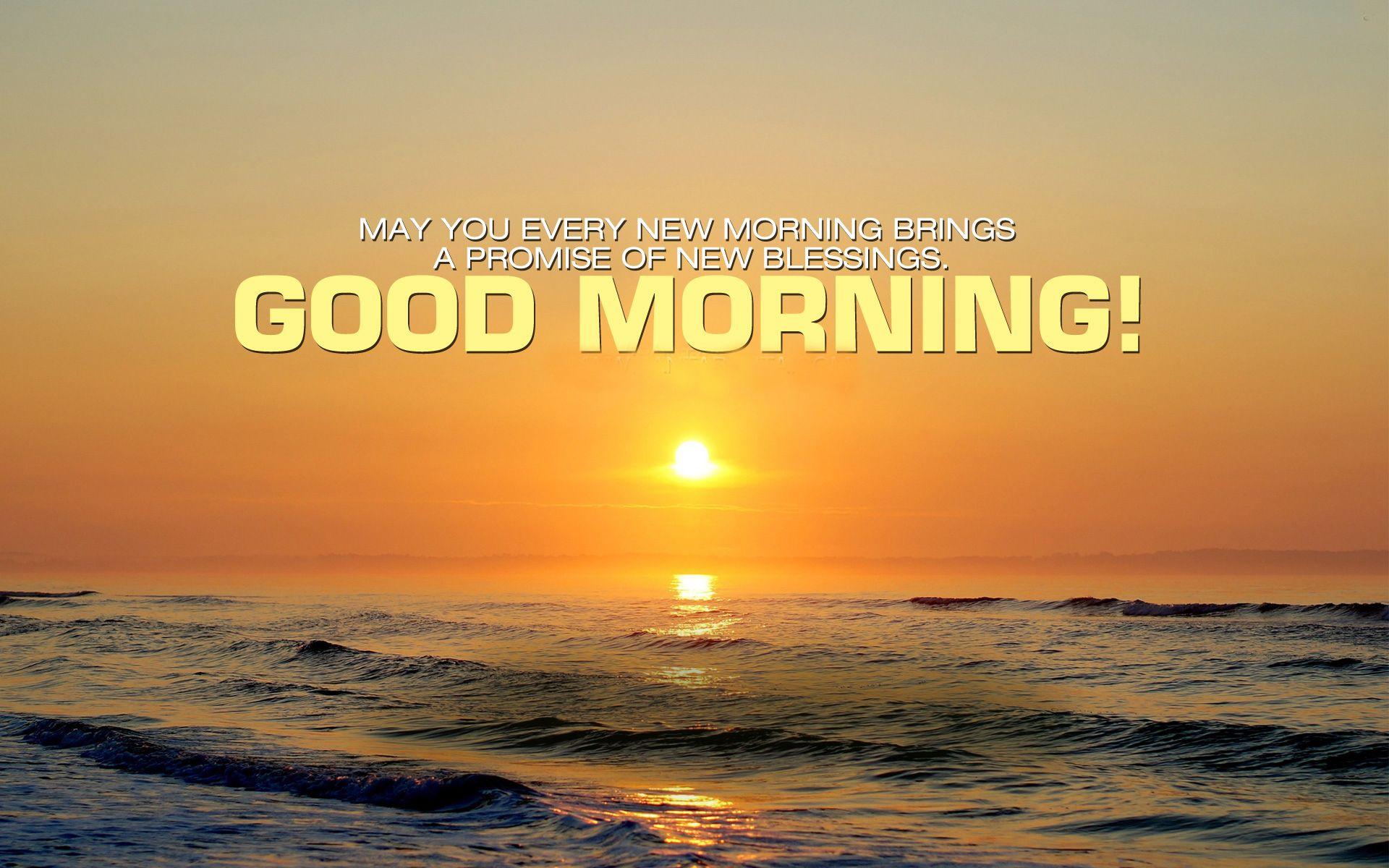 Wallpaper download good morning - Good Morning Wishes Hd Wallpaper Good Morning Wishes Hd Wallpaper Download Good Morning Wishes Hd Wallpapers