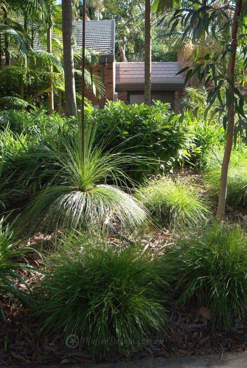 Portfolio Garden Designs Gordon Update Mallee Design Australian Garden Design Native Garden Backyard Landscaping