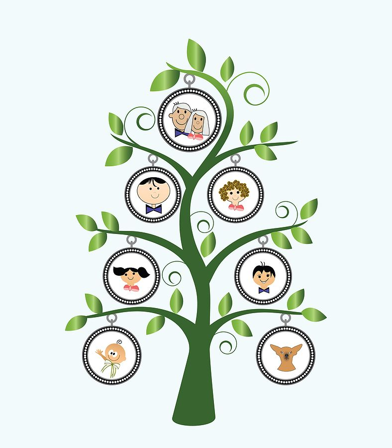 Pin On How To Draw A Family Tree