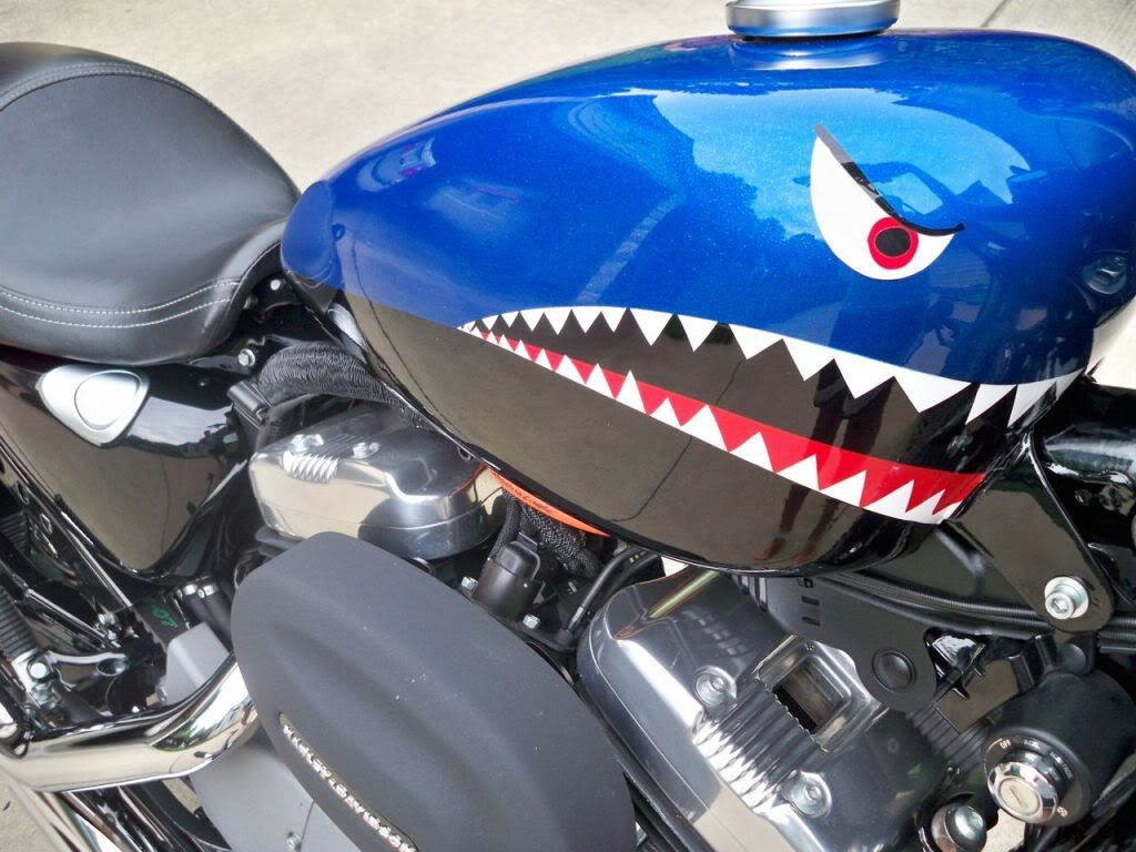 Evel Knievel Replica Harley Davidson Forums: The Sportster And Buell
