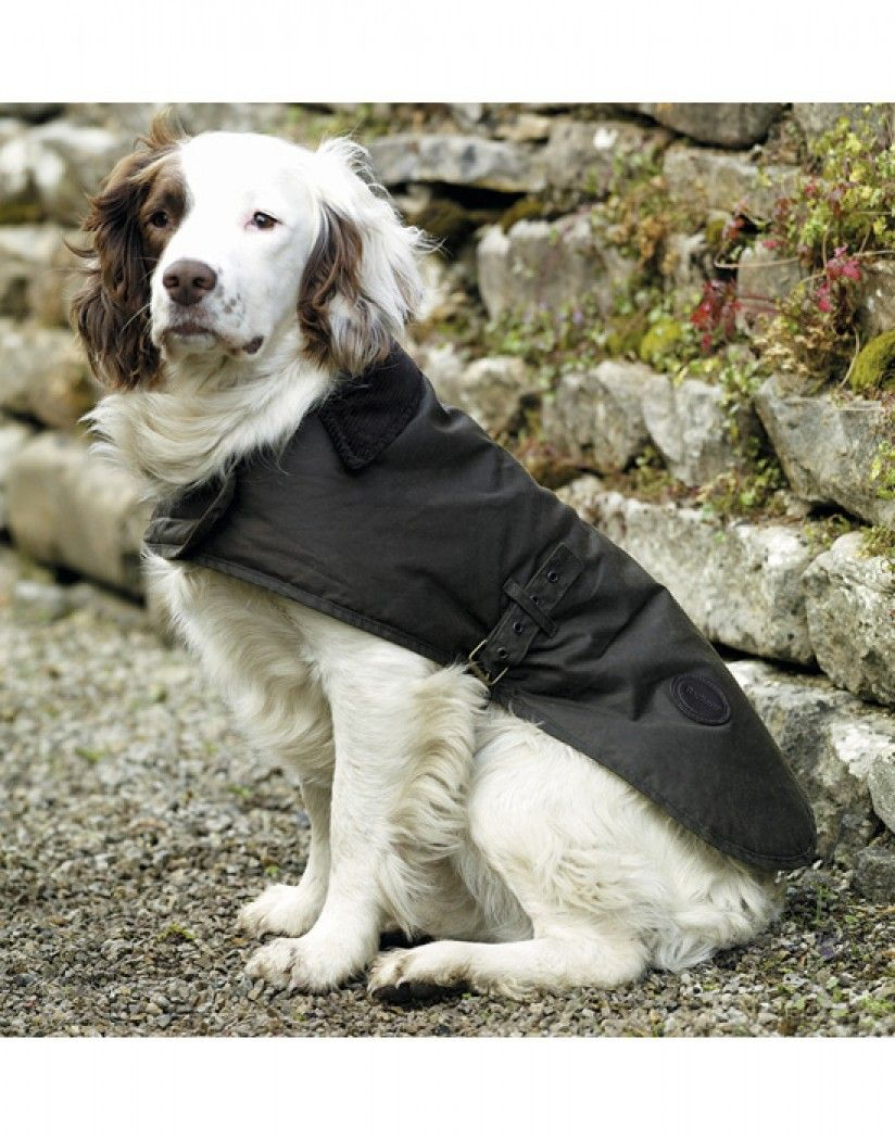 Barbour Wax Dog Jacket Black Country Attire Uk Dog Coats