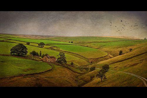 The Farm [Explore]
