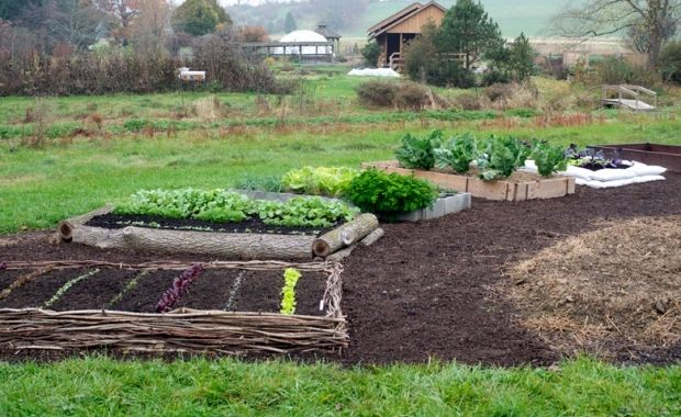 Organicgardening Awesome Site For