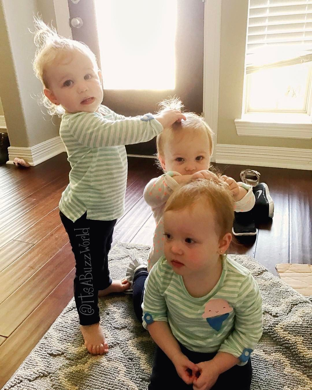 They are doing each otherus hair aww so cute  Buzbys  Pinterest