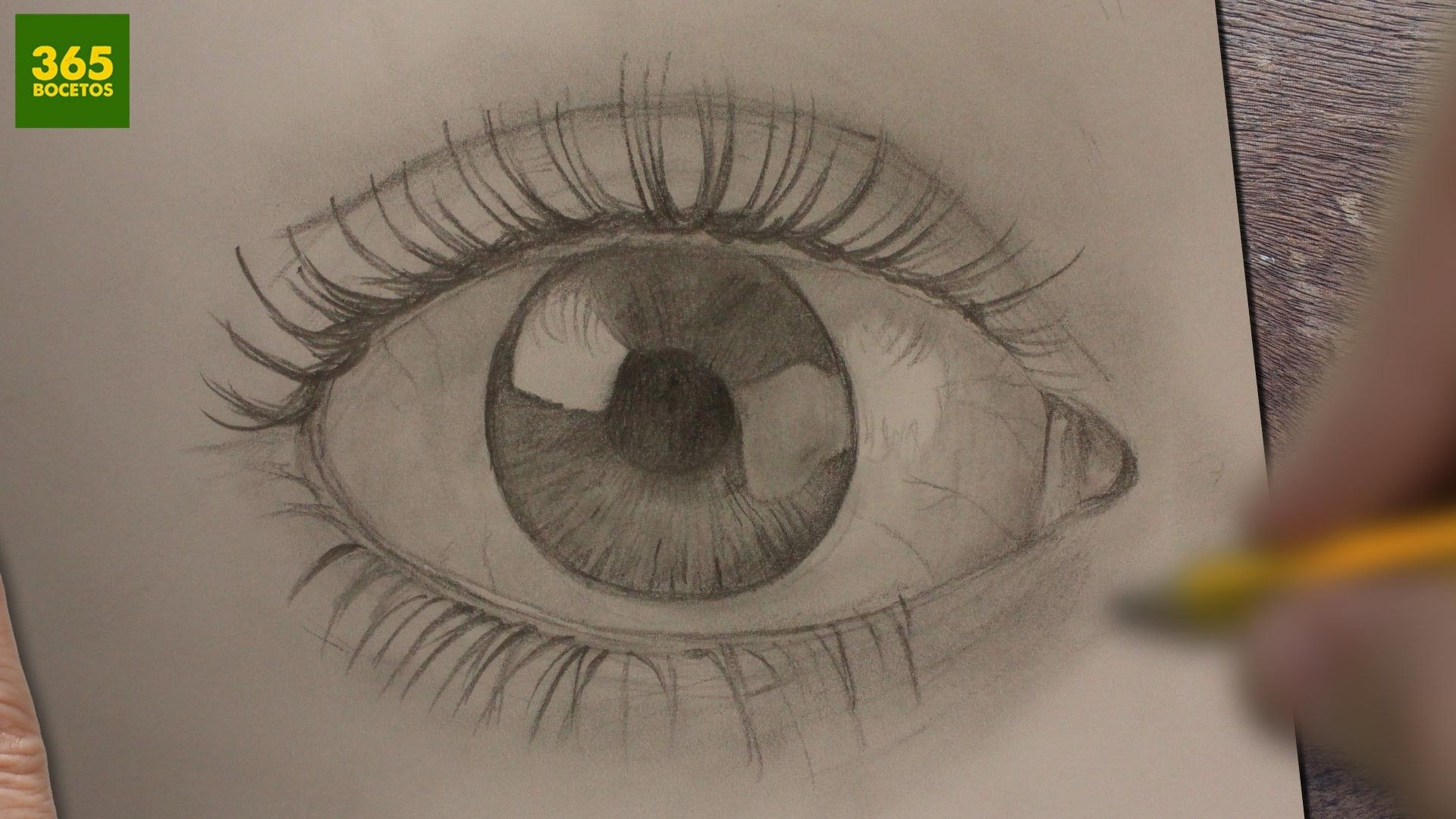 Como Dibujar Ojos Realistas A Lapiz Paso A Paso Dibujos Faciles How To Draw Eyes Dibujos De Ojos Como Dibujar Ojos Ojo Realista