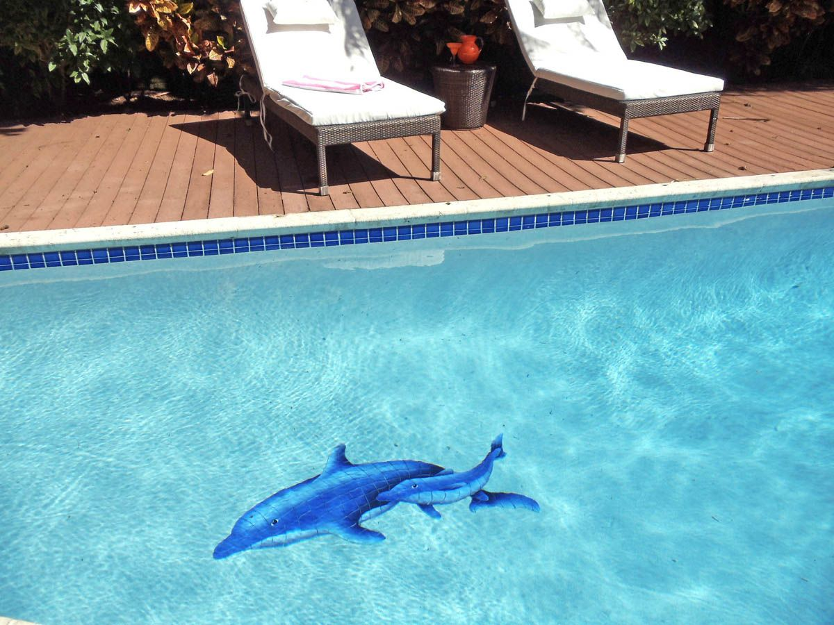Dolphin Pair mosaic design by AIM   AquaBlu Mosaics   Featured Pool ...