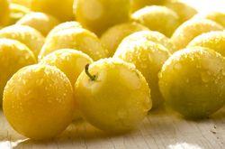 So fröhlich schmeckt Gelb...