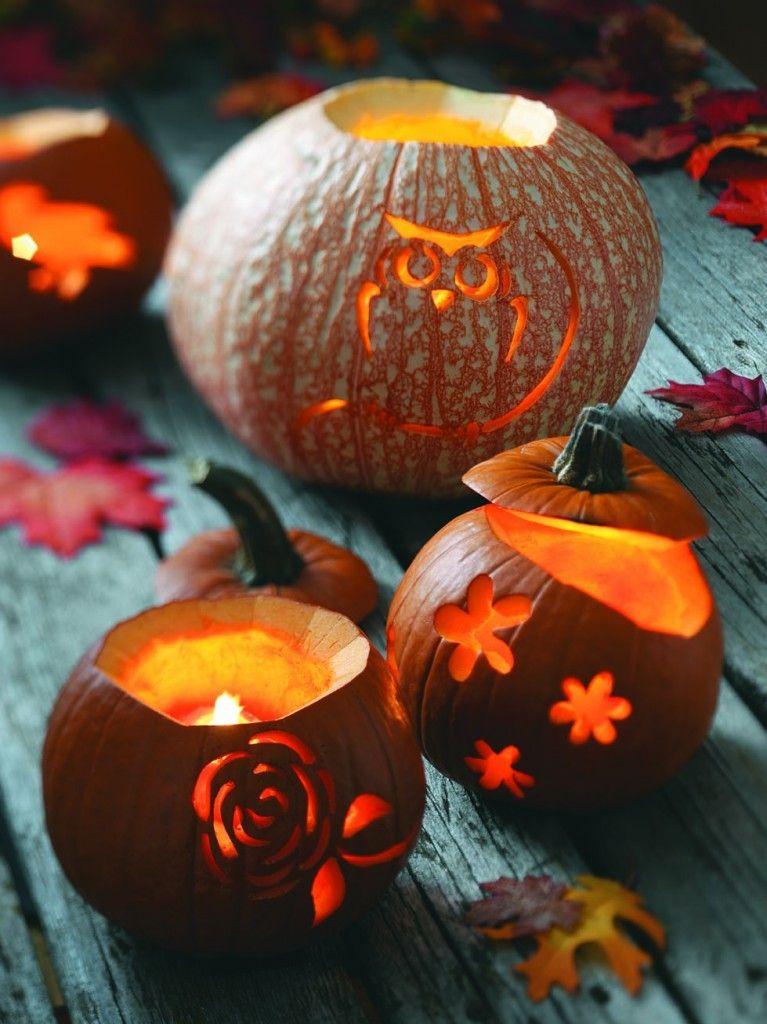 Nature inspired pumpkin carvings fall pinterest